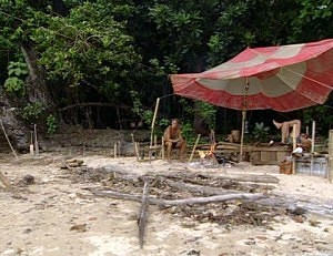 image from Survivor TV show